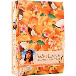 Wai Lana Raw Fruit & Nut Bar Apricot Cashew 12 bars